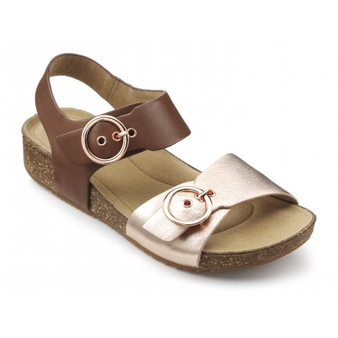 Hotter Tourist Dark Tan/Rose gold Std Fit Leather Flat Buckle Sandal